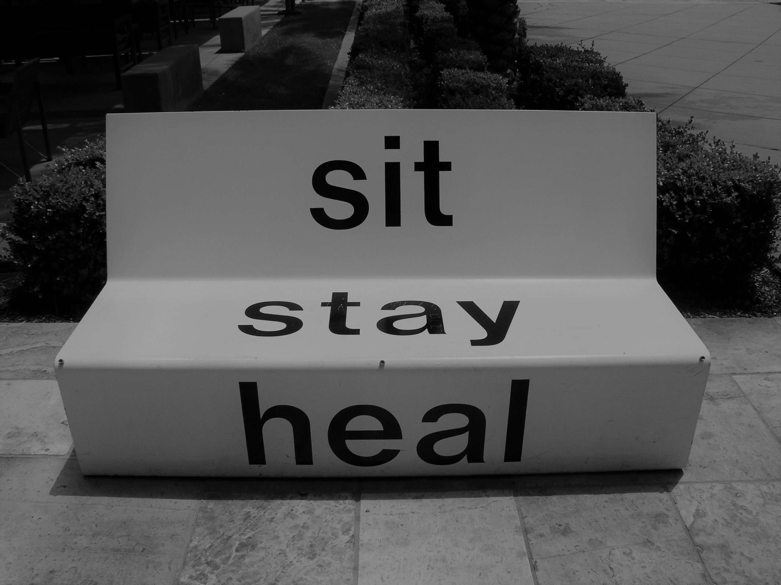 Sit Stay Heal